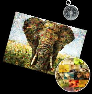 Fotomozaiek van een olifant van vele foto's