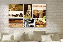 Wilde dieren fotocollage als woonruimtevoorbeeld