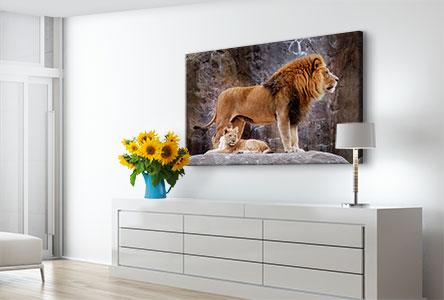 Woonruimte foto op canvas leeuwen met welpen